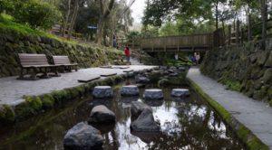 柿田川公園 湧水広場