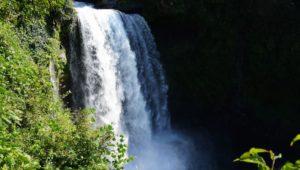 轟音が迫力ある大滝です