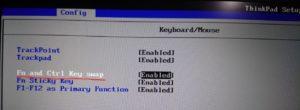 Fn and Ctrl Key swap(FnキーとCtrlキー入替)を有効にした状態