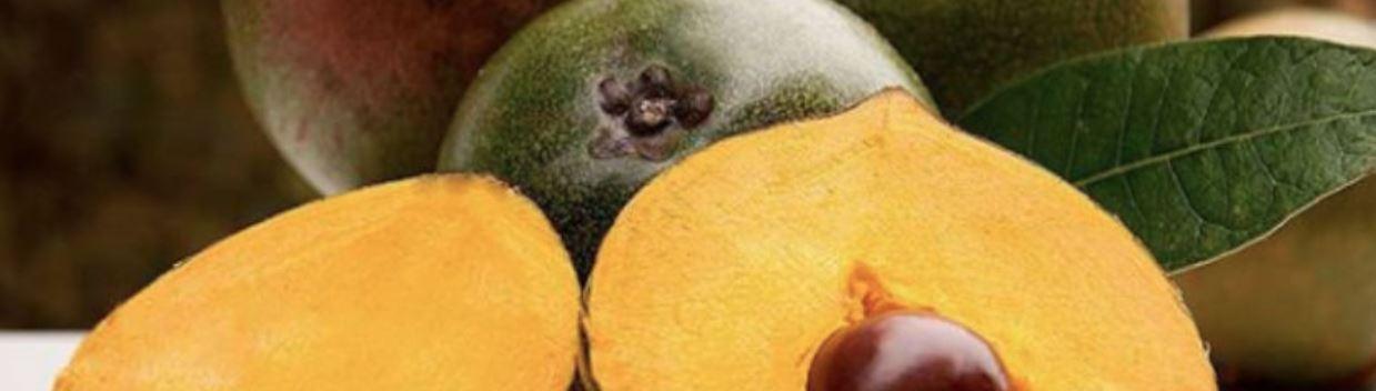 ルクマの果実